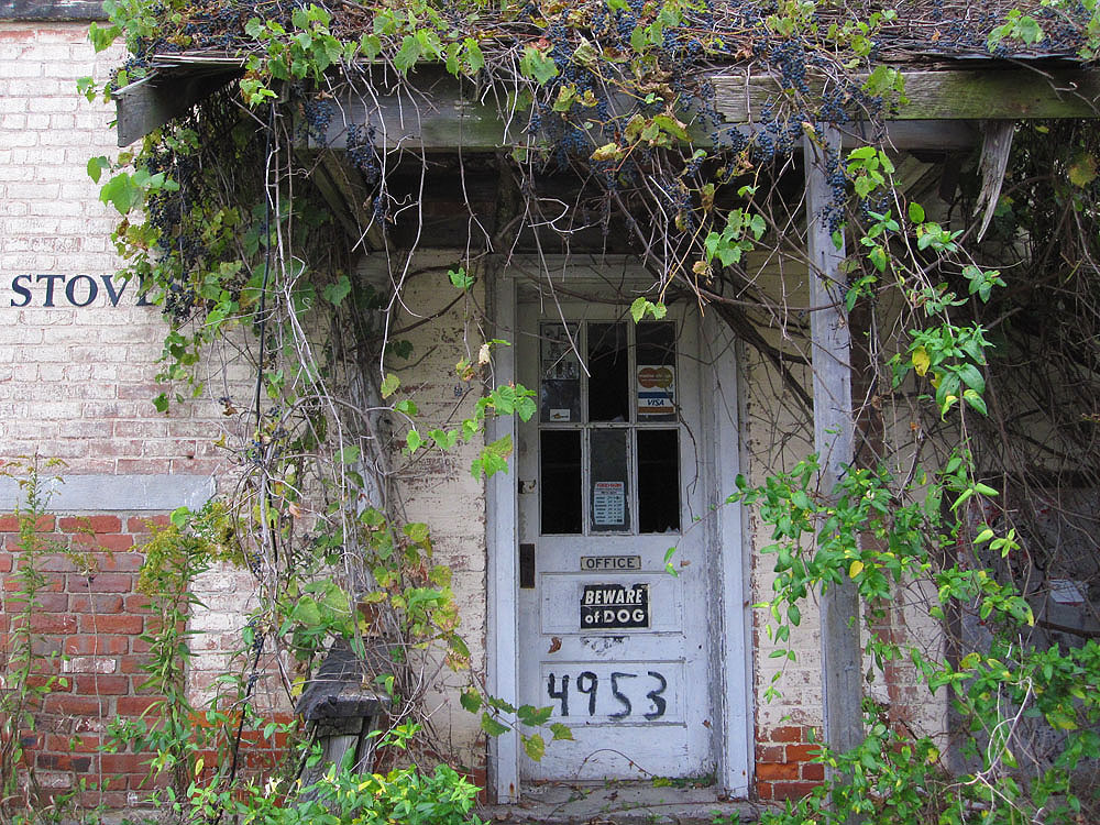 The overgrown front door to the old Mitchell place.